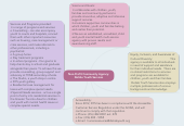 Mind map: Non-Profit Community Agency: Delisle Youth Services