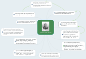 Mind map: Johann Peter Frank