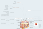 Mind map: SENTIDO DEL TACTO