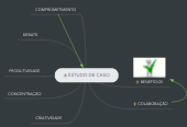 Mind map: ESTUDO DE CASO