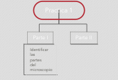 Mind map: Practica 1