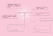 Mind map: MODELO DE VON NEUMANN