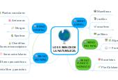 Mind map: LOS 5 REINOS DE LA NATURALEZA