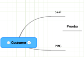 Mind map: Customer