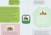 Mind map: Los charruas
