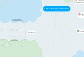 Mind map: Fase Intermedia del Proceso