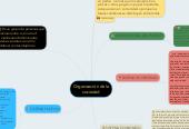 Mind map: Organización de la sociedad