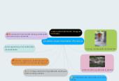 Mind map: problemas ambientales florencia