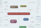 Mind map: BASES BIOLÓGICAS DE LA CONDUCTA HUMANA
