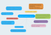Mind map: Medidas Cautelares en México.