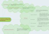 Mind map: elementos de la investigación cualitativa.