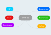 Mind map: WHY US