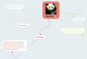 Mind map: Mamíferos