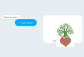 Mind map: Stella News