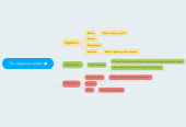Mind map: The digestive system