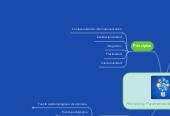 Mind map: Principios y Parámetros del Currículum
