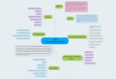 Mind map: P.E.I Universidad de Pamplona.