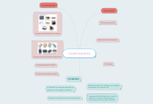 Mind map: COMPONENTES