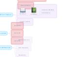 Mind map: AULA