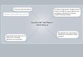 Mind map: La place des Tap/Nap en médiathèques