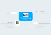 Mind map: real time in-ear translation - The Pilot System and its application