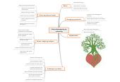 Mind map: Informationssøgning og-indsamling