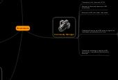 Mind map: Dinamització