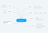 Mind map: My placement