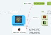 Mind map: Empresarios siglo xxi