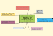 Mind map: INDUCCION AL MODELO PEDAGOGICO DEL LABORATORIO DE ENSEÑANZA PRACTICA DEL DERECHO