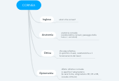 Mind map: CORNEA