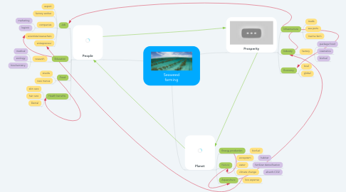 Mind Map: Seaweed farming