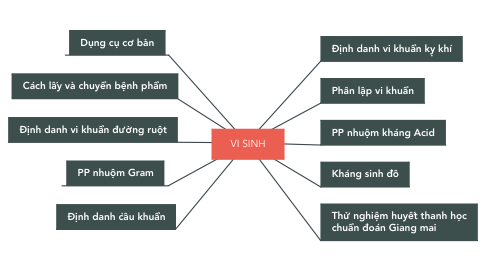 Mind Map: VI SINH