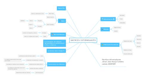 Mind Map: MATRICES / DETERMINANTES