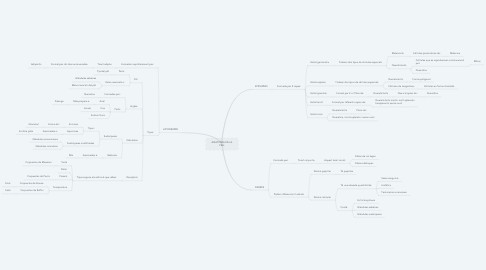 Mind Map: ANATOMIA DE LA PELL