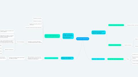 Mind Map: Evaluación Institucional