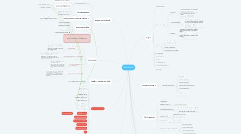 Mind Map: KSMNW.RU