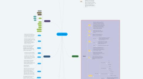 Mind Map: Artifact Arhiologic