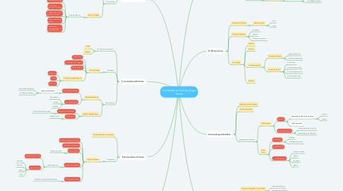 Mind Map: Corrientes en Antropología Social