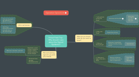Mind Map: Virtual Field Trip:  Why should I care about the Opioid Epidemic?