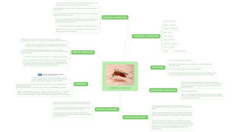 Mind Map: Anopheles mosquitoes