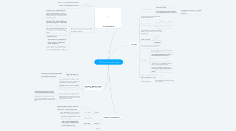 Mind Map: The Cardiovascular  System
