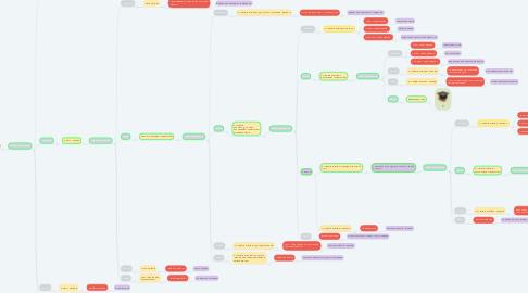 Mind Map: #стандартные процедуры