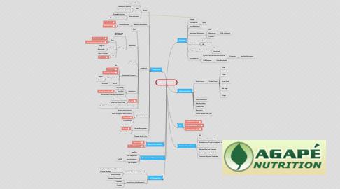 Mind Map: Fibromyalgia