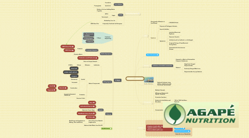 Mind Map: BioFilms and SIBO