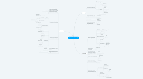 Mind Map: Blue Conquer Solutions IVS