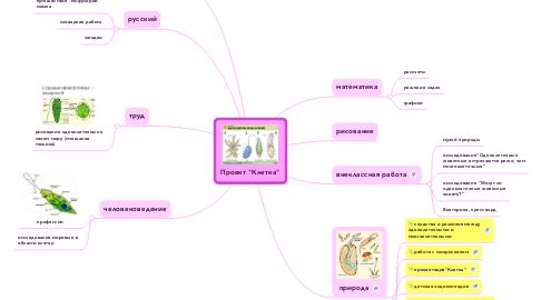 "Mind Map: Проект ""Клетка"""