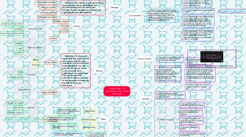 Mind Map: Schéma Bilan : La consommation une activité économique