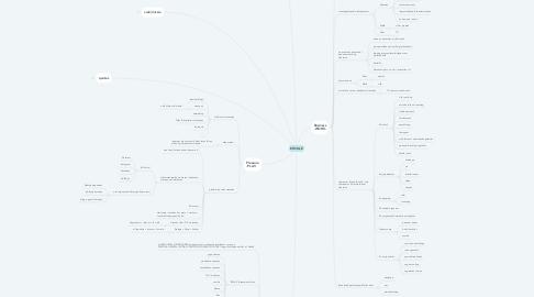 Mind Map: EDVILLE