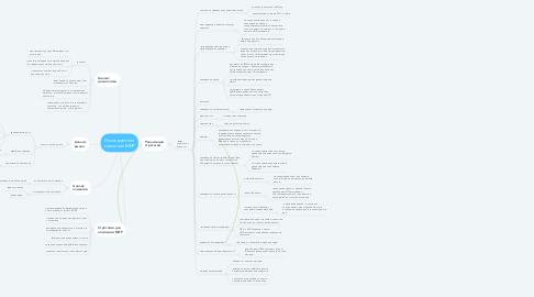 Mind Map: Исследование компании МИР